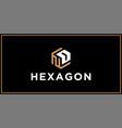nd hexagon logo design inspiration vector image vector image