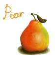 painted pear vector image vector image