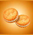 detailed sandwich cookies or crackers with cream vector image vector image