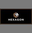 nk hexagon logo design inspiration vector image vector image