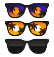 sun glasses with tropical vector image vector image