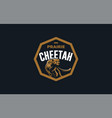 the image a cheetah vector image vector image