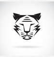 tiger face design on white background wild vector image vector image