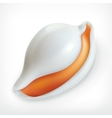 White shell icon vector image vector image