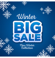 Winter christmas big sale vector image vector image