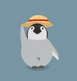 baby penguin wiht hat vector image vector image