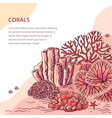 beautiful coral card for print vector image vector image