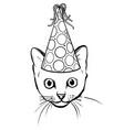 cartoon curious peeking cat vector image