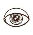 Eye rough symbol vector image vector image
