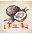 Hand drawn sketch fruit coconut Eco food vector image