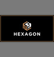 ns hexagon logo design inspiration vector image vector image