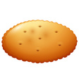 Round cracker on white vector image vector image