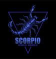 scorpio zodiac vector image vector image