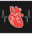 The heart and cardiogram icon vector image vector image