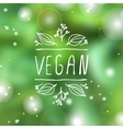 Vegan product label on blurred background vector image vector image