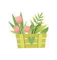 bouquet of pink tulips with leaves in green wooden vector image
