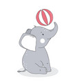 cute baby elephant with balloon vector image