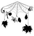 floral spider web vector image vector image