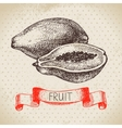 Hand drawn sketch fruit papaya Eco food vector image vector image