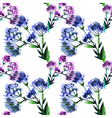 seamless pattern watercolor bouquet Flowers vector image