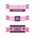 set of sale banner flat style ribbons vector image