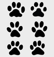 paws of cats vector image
