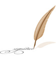 feather and signature vector image vector image