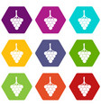 grapes on the branch icon set color hexahedron vector image vector image