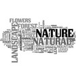 natural word cloud concept vector image vector image