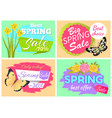 best choice spring sle only today special offer vector image vector image
