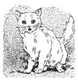 cat meows vintage vector image vector image