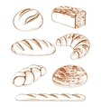 collection of breads vector image vector image