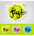fresh stiker logo vector image vector image