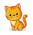 ginger kitten sitting on a white background cute vector image