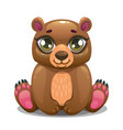 little cute cartoon sitting bear vector image vector image