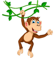 monkey cartoon hanging vector image vector image