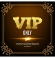 VIP members only Vip persons background Vip club vector image vector image