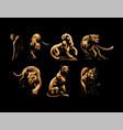 wild cats jaguar cheetah leopard panther vector image vector image