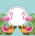 circle sticker with flamingo and tropical fruits vector image vector image