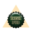 Color vintage irish pub emblem vector image vector image