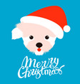 dog face santa cap flat style vector image vector image