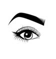 Female Eye and Eyebrow Makeup The Beauty Industry vector image vector image