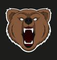 raring head bear