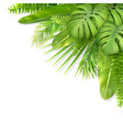 tropical leaves in a corner vector image vector image