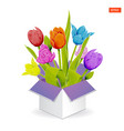 bouquet of colorful tulips in a gift open box vector image