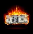 burning dollar on a black background for design vector image vector image