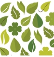 green leafs isolated design vector image