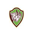 Mountain Goat Ram Angry Head Retro vector image vector image