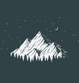 night mountain vector image