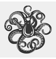 Octopus with arms and suction cups on it tentacle vector image vector image